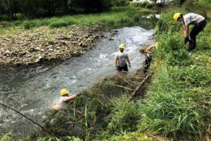 conservation riverbank